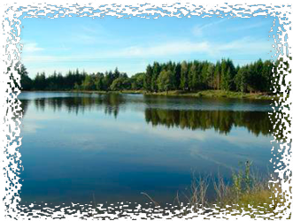 Lac Les Pins For All Inclusive Carp Fishing Packages in France