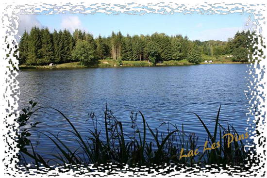 Lac Les Pins Carp Fishing Lake In France
